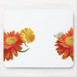 Gerbera daisies bunch mouse pads