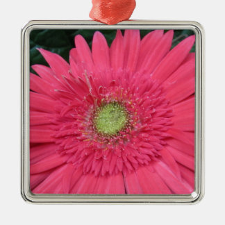 Gerbera Daisy Christmas Ornament