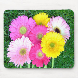 Gerbera Daisy Colors Mousepad