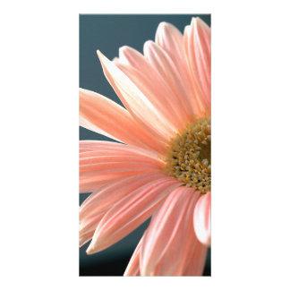 gerbera-daisy customised photo card