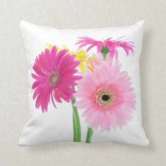 Gerbera Daisy Flowers Cushion