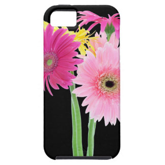 Gerbera Daisy Flowers iPhone 5 Cases