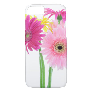 Gerbera Daisy Flowers iPhone 8/7 Case