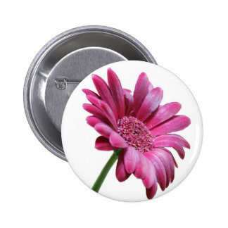Gerbera Daisy Round Button