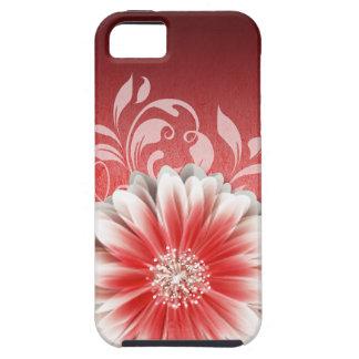 Gerbera Daisy Scroll 1 red burgundy iPhone 5 Case