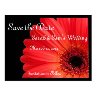 Gerbera Daisy Theme Save the Date Postcard