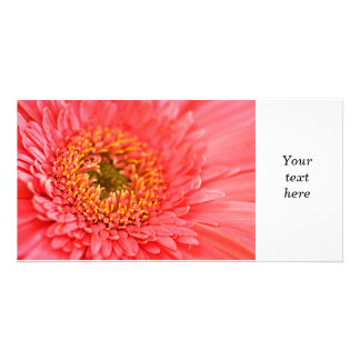 Gerbera flower personalized photo card