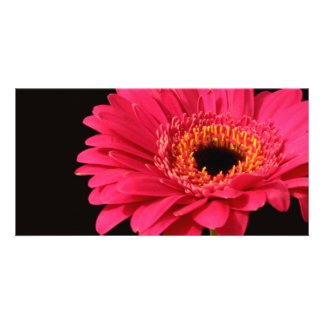 Gerbera in pink personalized photo card