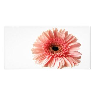 Gerbera Personalised Photo Card