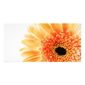 Gerbera Photo Card