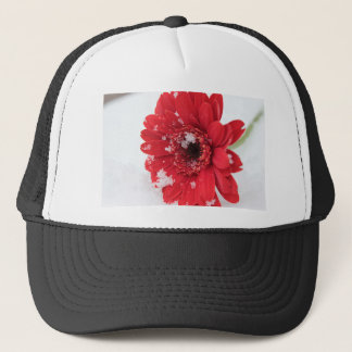Gerbera Trucker Hat