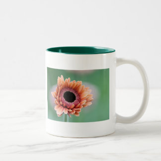 Gerbera Two-Tone Coffee Mug