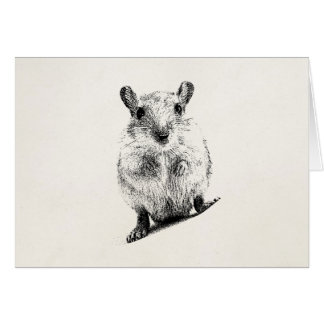 Gerbil Baby Animal Illustration Pet Gerbils Card