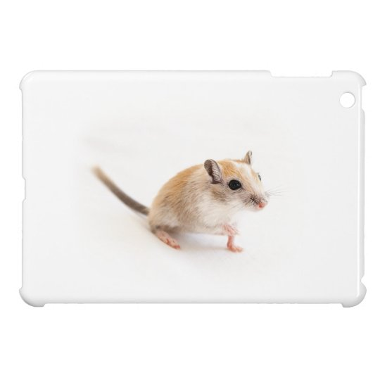 Gerbil Cute Baby Animal Pet Gerbils Template iPad