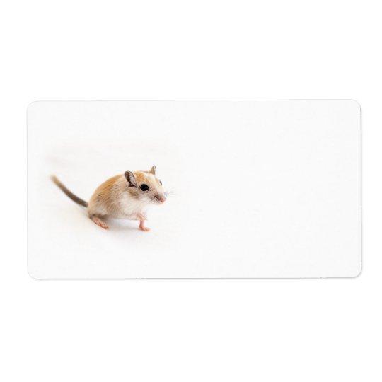 Gerbil Cute Baby Animal Pet Gerbils Template Shipping