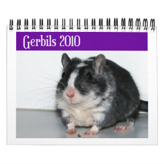 Gerbils Calendar (Reprint)