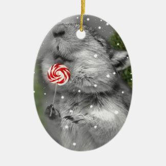 Gerbil's Christmas Dream Christmas Ornament