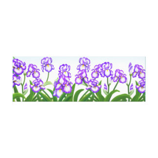 German Bearded Iris Garden Wrapped Canvas Canvas Prints