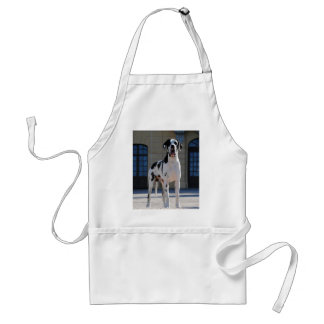 German Dogge great dane Hunde Dogue Allemand Apron
