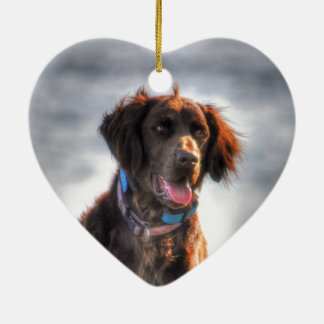 German Longhaired Pointer Dog HDR Photo Ceramic Heart Decoration