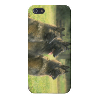 German Shepard Dogs TIphone 4 Case Case For The iPhone 5