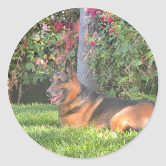German Shepard Gifts Classic Round Sticker