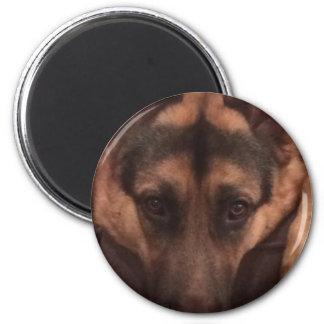 German Shepard magnet