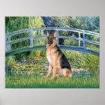German Shepherd 11   -  Lily Pond Bridge Poster
