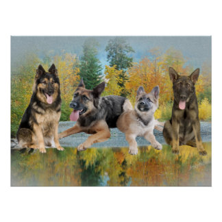 German Shepherd An Autumn Day Posters