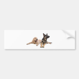german shepherd and golden retriever bumper sticker