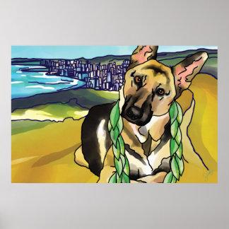 German Shepherd at Top of Diamond Head, Hawaii Poster