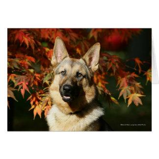German Shepherd Autumn Leaves Greeting Card
