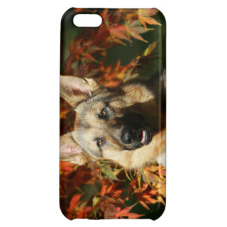 German Shepherd Autumn Leaves iPhone 5C Case