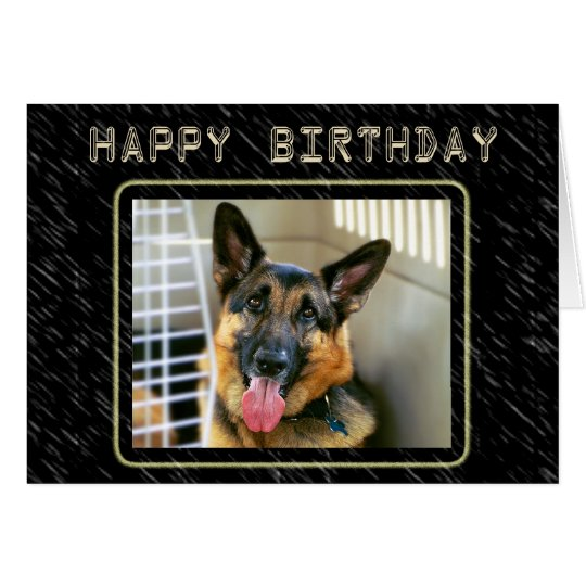 German Shepherd Birthday Card