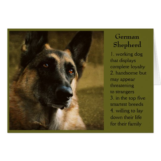 German Shepherd Birthday Card for Dad