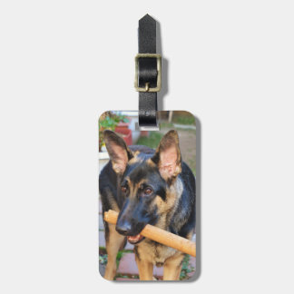 German Shepherd by Shirley Taylor Luggage Tag