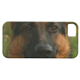 German Shepherd iPhone 5 Cases