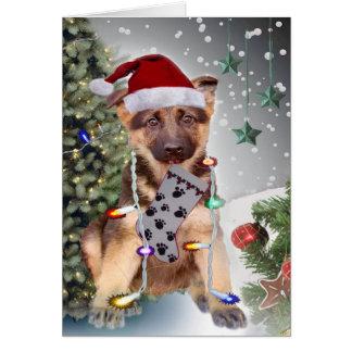 German Shepherd Christmas Lights Cards