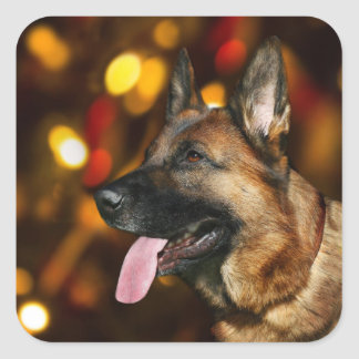 German Shepherd Christmas Square Sticker