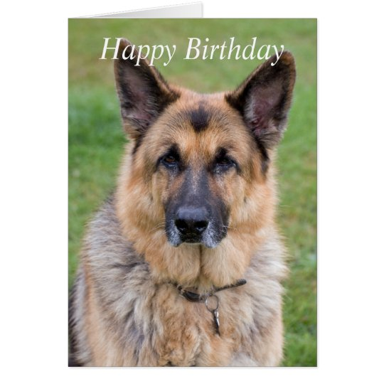 German Shepherd dog beautiful custom birthday card
