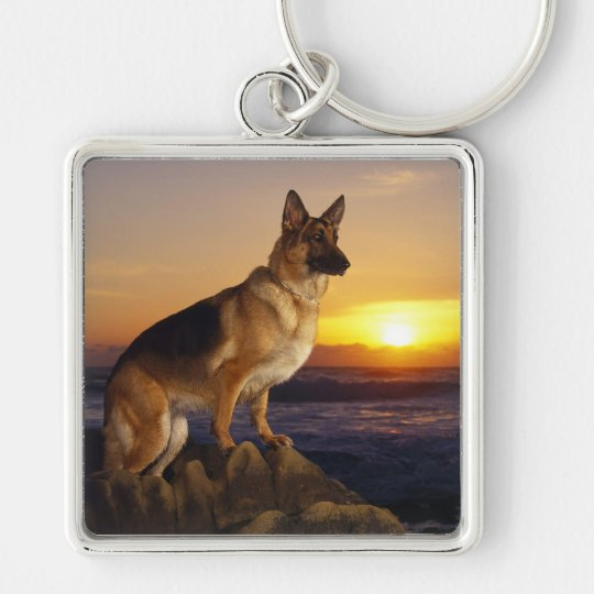 German Shepherd dog Silver-Colored Square Key Ring