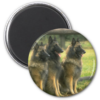 German Shepherd  Dogs 6 Cm Round Magnet