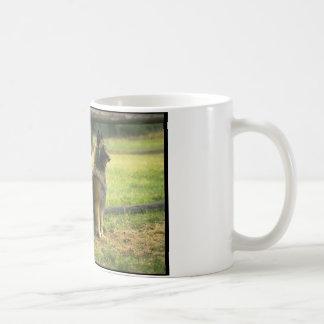 German Shepherd Dogs Classic White Coffee Mug