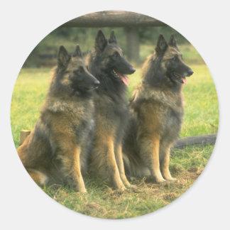 German Shepherd  Dogs Round Sticker
