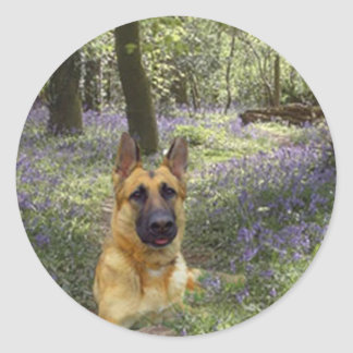 German Shepherd Forest Sticker