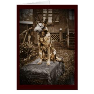 German Shepherd in Gas Mask Card