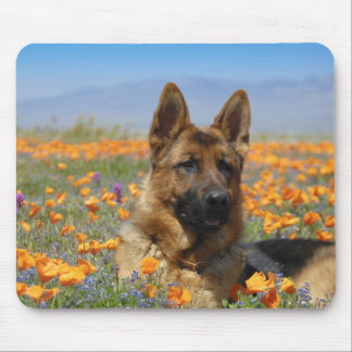 German Shepherd in poppy fields Mouse Mat