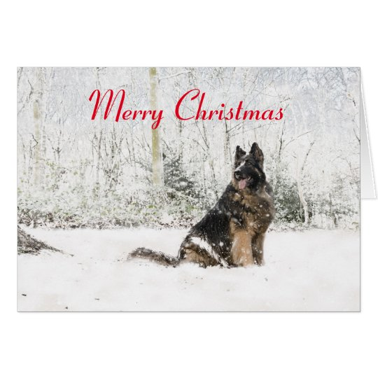 German Shepherd in the snow Card