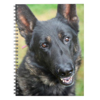 German Shepherd Notebooks