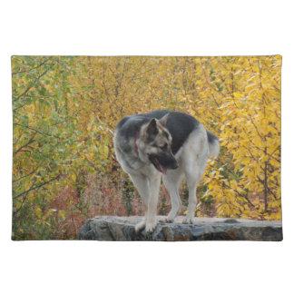 German Shepherd on a Rock Placemats